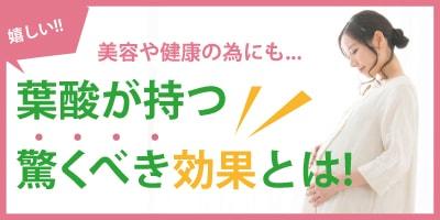 人気コンテンツ・葉酸の美容と健康に関する効果と効能